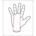 Maniques de sport protège mains 2 trous verte