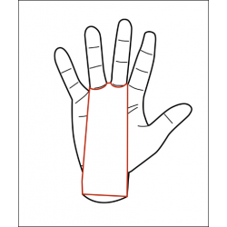 2 holes White Grips AZOR - PICSIL