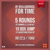 WOD Training Distribution ⚡️by @lilloocross For Time5 Rounds20 Dumbbell Clean Alt 15 Box Jump 10 Handstand Push UpDB 22,5 / 15kgPoste ton résultat en commentaire 🙌Training-distribution.com 💫#trainingdistribution #wod #training