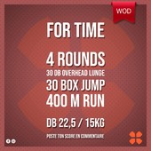 WOD Training Distribution ⚡️For Time4 Rounds30 Dumbbell Overhead Lunge 30 Box Jump 400m RunDB 22,5 / 15kgPoste ton résultat en commentaire 🙌 Training-distribution.com 💫#trainingdistribution #wod #training