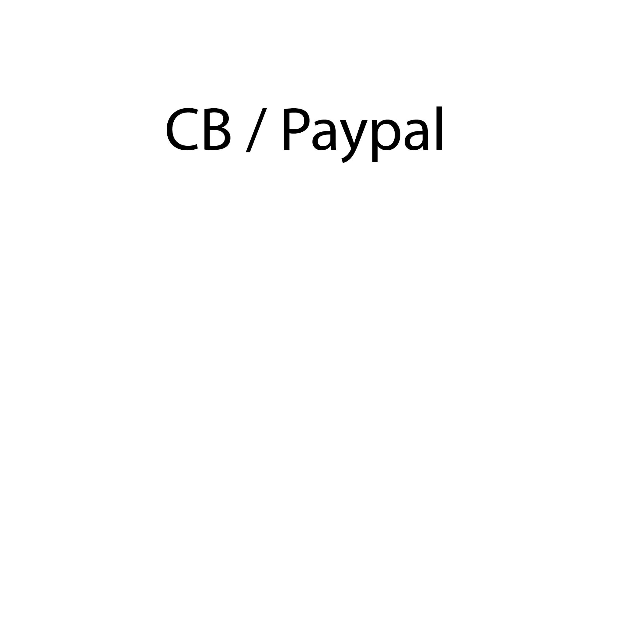 Nous proposons lles règlements via Carte bleue, ou Paypal. Tous les modes de paiement sont assurés sécurisés. Vous recevez votre ticket de paiement directement par email.